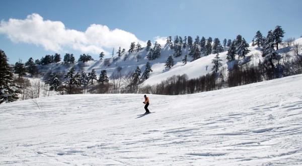 Εθνικό Χιονοδρομικό Κέντρο Βασιλίτσας