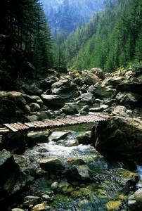Γεφυράκι στο Αρκουδόρεμα
