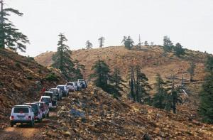 Διαδρομές στα δάση της Σμίξης