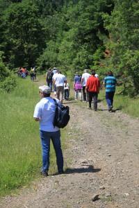 """Οργανωμένη βόλτα στη φύση για την ανακάλυψη τρούφας στο πλαίσιο της εκδήλωσης """"Δρόμοι Μανιταριού"""""""