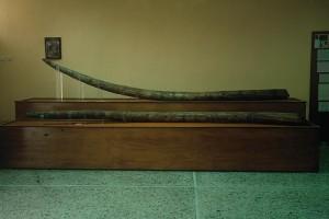 Στο Μουσείο Μηλιάς