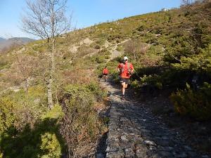 Orliakas race 2015